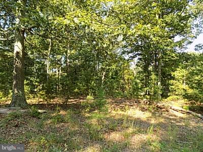 Millville Residential Lots & Land For Sale: 423 Lark Road
