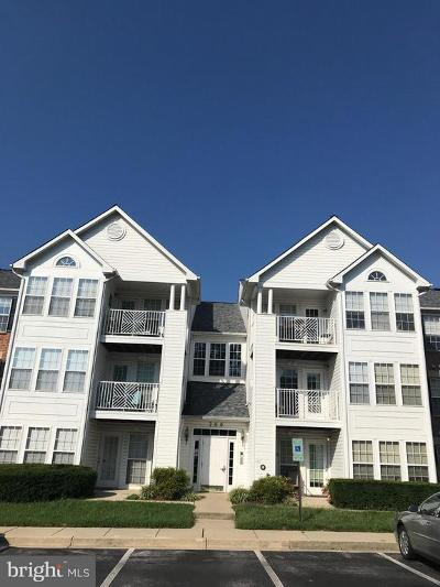 Chapel Grove, Piney Orchard Rental For Rent: 705 Harvest Run Drive #203