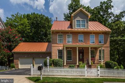 Gaithersburg Single Family Home For Sale: 113 Leekes Lot Way