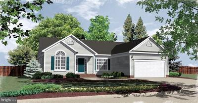 Culpeper Single Family Home For Sale: Lot 143