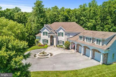 Howard County Single Family Home For Sale: 7028 Meandering Stream Way