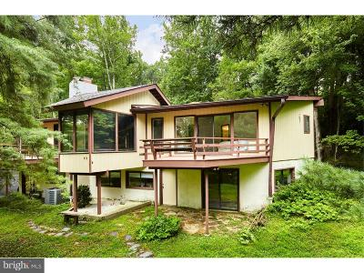 Phoenixville Single Family Home For Sale: 305 Jug Hollow Road
