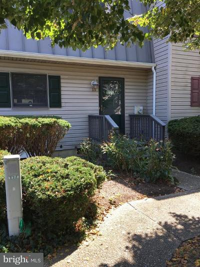 Sussex County Rental For Rent: 37273 Martin Street #19
