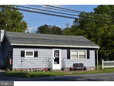 Mohnton Single Family Home For Sale: 3316 Morgantown Road