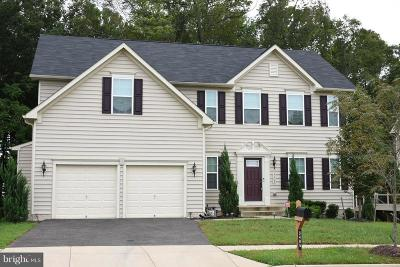 Accokeek Single Family Home For Sale: 3405 Saint Marys View Road