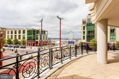 Prince Georges County Condo For Sale: 155 Potomac #329
