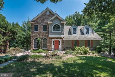 Baltimore Single Family Home For Sale: 6017 Lakeview Road