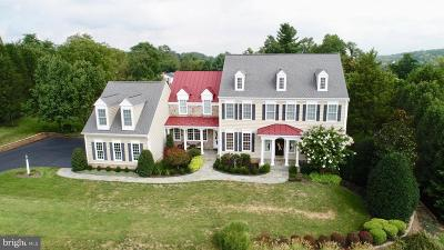 Paeonian Springs Single Family Home For Sale: 40054 Glenmore Court