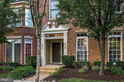 Gaithersburg Condo For Sale: 629 Whetstone Glen Street