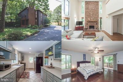 Falls Church Single Family Home For Sale: 3132 Annandale Road