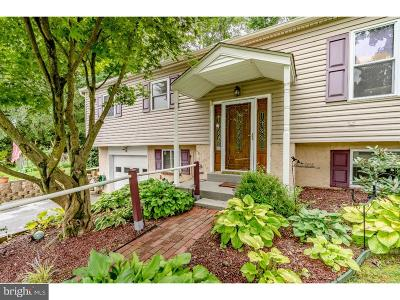 Downingtown Single Family Home For Sale: 3316 E Summit Avenue