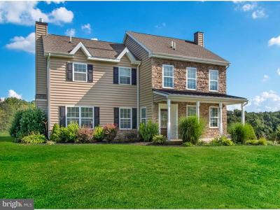 Pottstown Single Family Home For Sale: 256 W Moyer Road