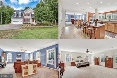 Fredericksburg Single Family Home For Sale: 39 Boxwood Drive