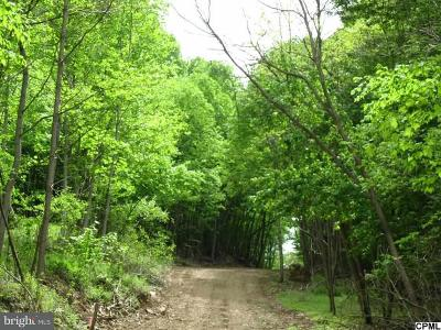 Marysville Residential Lots & Land For Sale: 130 Kittochtinny Drive