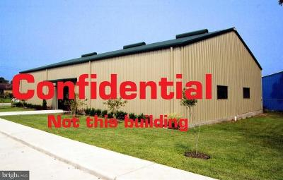 Cumberland County Commercial For Sale: 1081 Harrisburg Pike