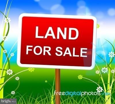 Residential Lots & Land For Sale: 8884 Olde Scotland Road