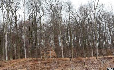 Hershey Residential Lots & Land For Sale: Hill Manor Road Parcel #24-052-200