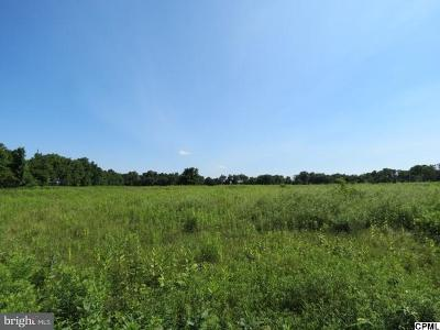 Hershey Residential Lots & Land For Sale: 2167 Bachmanville Road #LOT