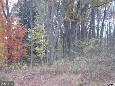 New Cumberland Residential Lots & Land For Sale: 345a Old York Road
