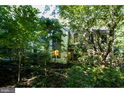Downingtown Single Family Home For Sale: 203 Silver Fox Lane
