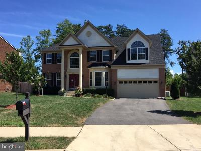 Prince William County Single Family Home For Sale: 3985 Whips Run Drive