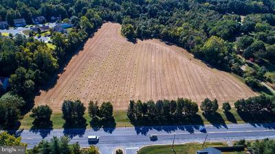 La Plata Residential Lots & Land For Sale: 203 Port Tobacco Road