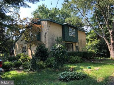 Shamong Single Family Home For Sale: 1051 Route 206