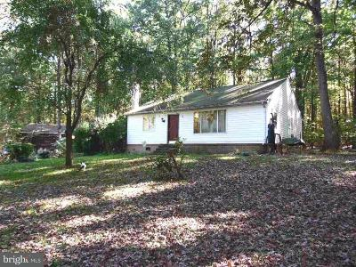 Boiling Springs Single Family Home For Sale: 611 Gutshall Road