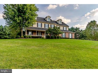 Collegeville Single Family Home For Sale: 1068 Hildebidle Drive