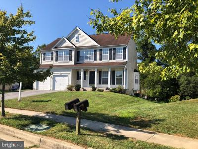 Randallstown Single Family Home For Sale: 9739 Eustice Road