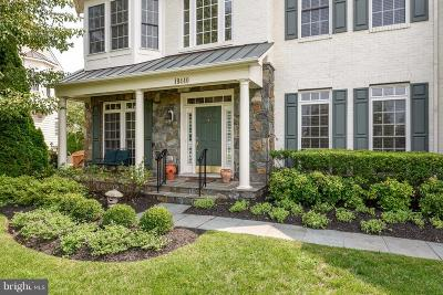 Leesburg Single Family Home For Sale: 19440 Mill Dam Place