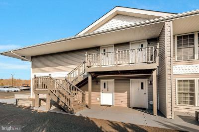 Spotsylvania County Condo For Sale: 13705 Anna Point Lane #9