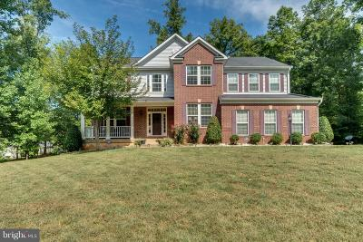 Spotsylvania Single Family Home For Sale: 9913 Willow Ridge Way