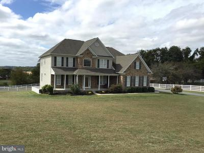 New Windsor Single Family Home For Sale: 2320 Grapes View Drive