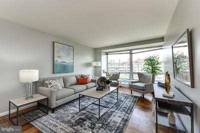 Rental For Rent: 1425 4th Street SW #A713