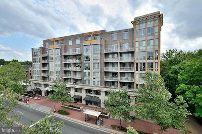 Falls Church Condo For Sale: 513 Broad Street #607