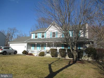 Temple Hills Single Family Home For Sale: 4120 Leisure Drive