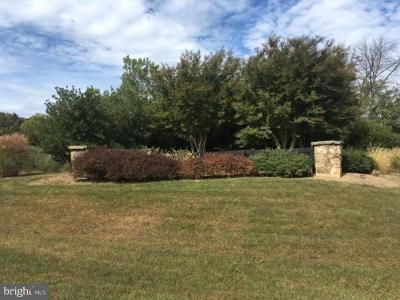 Aldie Residential Lots & Land For Sale: 21650 Clear Creek Lane