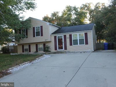 Waldorf Single Family Home For Sale: 1184 Bannister Circle