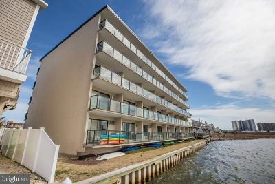 Ocean City Single Family Home For Sale: 169 Jamestown Road #205