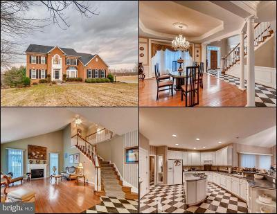 Reisterstown Single Family Home For Sale: 2518 Chestnut Woods Court