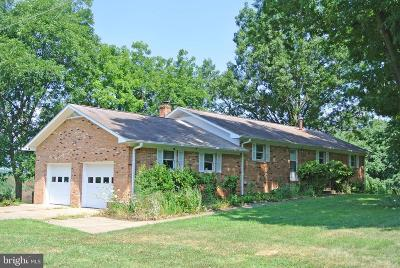 Rappahannock County Single Family Home For Sale: 401 Seven Ponds Road