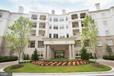 Bethesda Condo For Sale: 8111 River Road #121