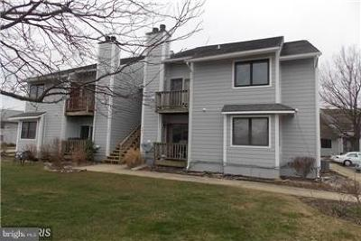 Stevensville Condo For Sale: 506 Marion Quimby Drive