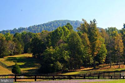Madison County Farm For Sale: 409 Cook Mountain Drive