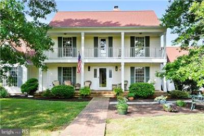 Talbot County Farm For Sale: 10490 Lake Road