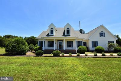 Somerset County, Wicomico County, Worcester County Farm For Sale: 3869 Allen Road