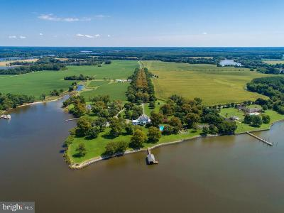 Bozman, Claiborne, Cordova, Easton, Mcdaniel, Neavitt, Newcomb, Oxford, Queen Anne, Royal Oak, Saint Michaels, Sherwood, St Michaels, St. Michaels, Tilghman, Trappe, Wittman, Wye Mills Farm For Sale: 26546 Presquile Drive
