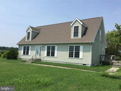 Lincoln Single Family Home For Sale: 15151 Staytonville Road
