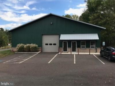 Bucks County Commercial For Sale: 77 Industrial Drive